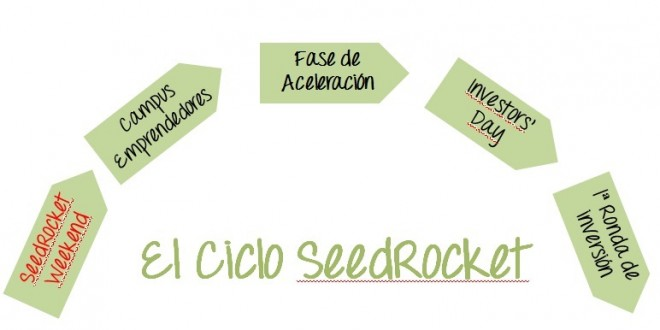 seedrocket_ciclo